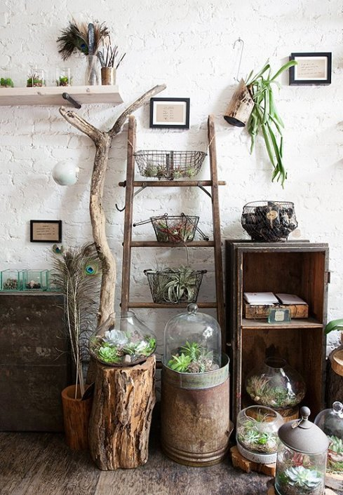 Fresh-Interior-Designs-Fit-For-Plant-Enthusiasts-homesthetics-13