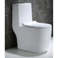 Dual+Flush+Elongated+One-Piece+Toilet.jpg
